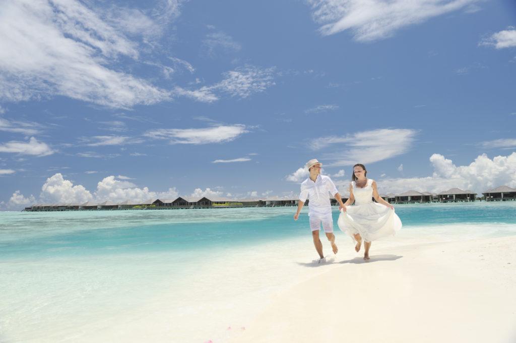 Paradise_Island_MISC 05