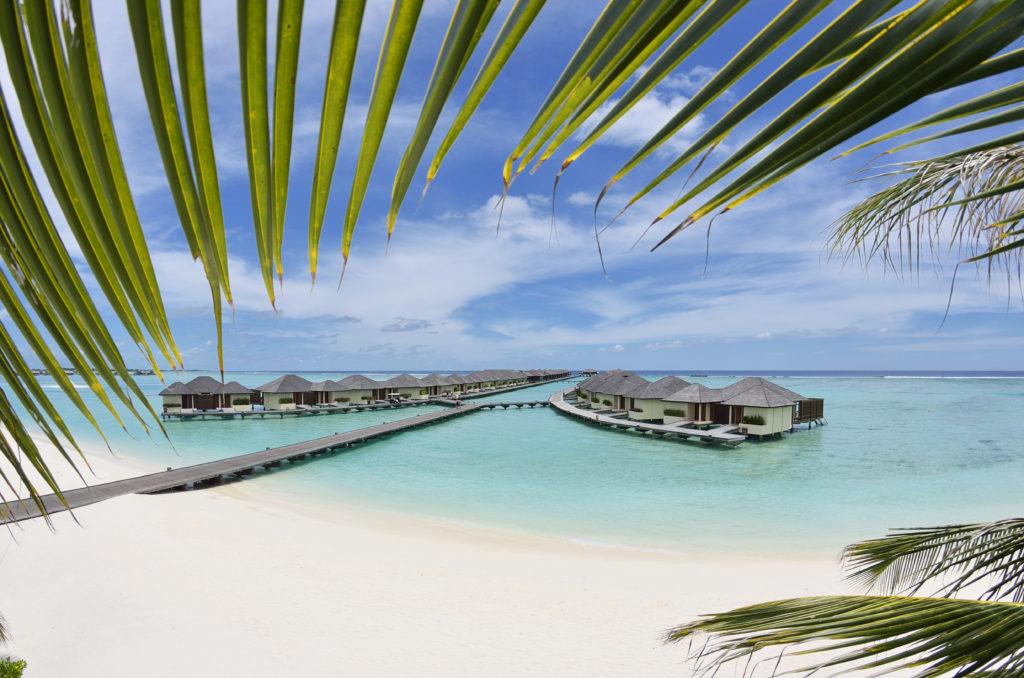 Paradise_Island_Pano 03